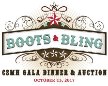 2017 Boots and Bling